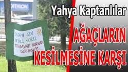 """""""ETKİLERİ BİLİNMİYOR"""""""